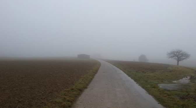 Snap 042 – Nebel